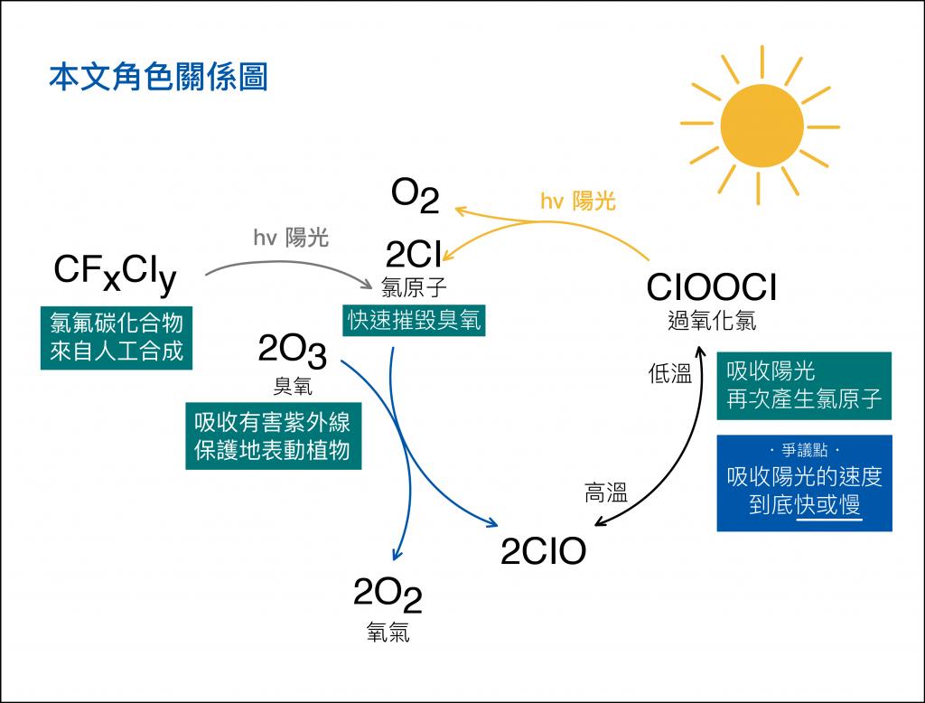 氯原子(Cl)會摧毀臭氧(O3), 而過氧化氯(ClOOCl)照到陽光會再次產生氯原子(Cl),讓更多臭氧(O3)遭殃。圖說設計|林婷嫻、張語辰