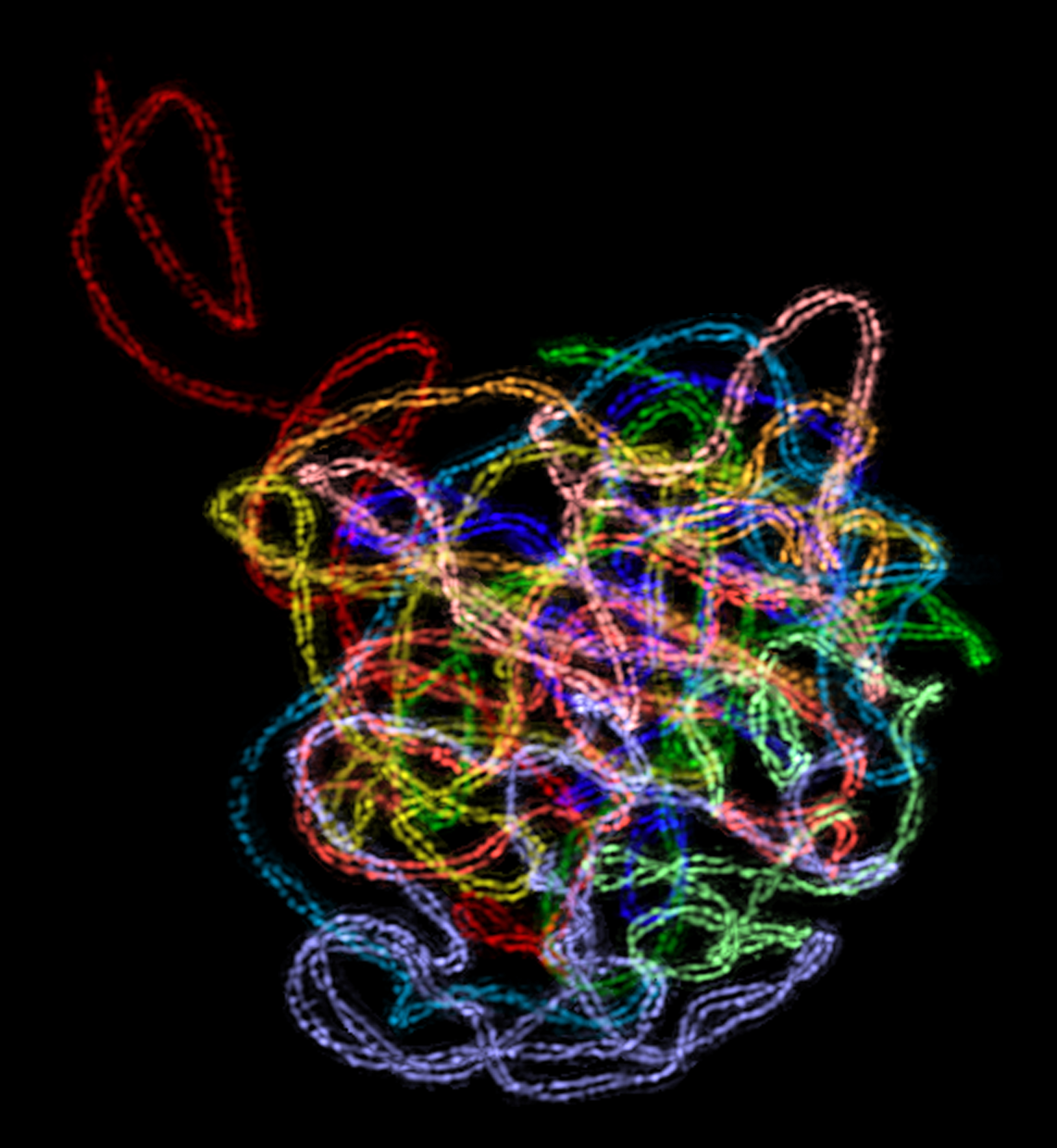超高解析度螢光顯微鏡中的世界不只美,更能發現人類肉眼看不到的細胞奧妙, 圖中可以看見玉米染色體的「聯會複合體」結構。 此照片獲得 2009 年 OLYMPUS BioScapes 比賽世界第二名。 顯微鏡攝影│王中茹