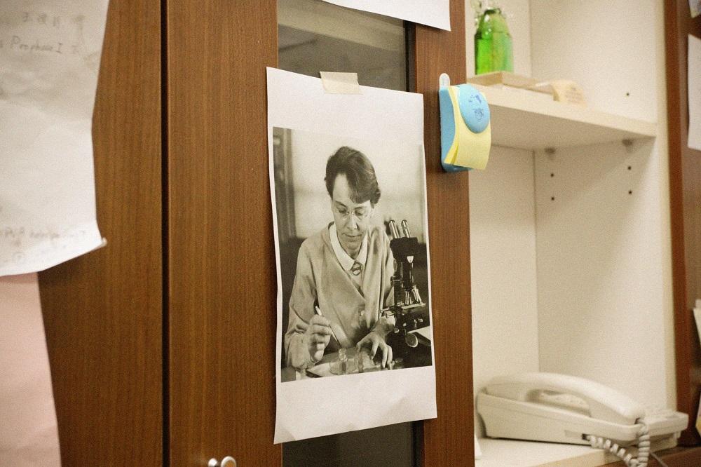 王中茹的辦公桌後方貼著偶像 Barbara McClintock 的照片, 她終身致力於玉米細胞遺傳學研究, 因為發現跳躍基因,被認為是「玉米田裡的先知」。 攝影│張語辰