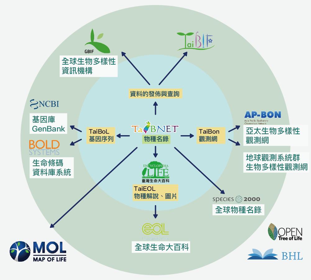 台灣生物多樣性資料庫建置、整合、與國際接軌的架構資料來源|系統分類及生物多樣性資訊專題中心 圖說美化|張語辰