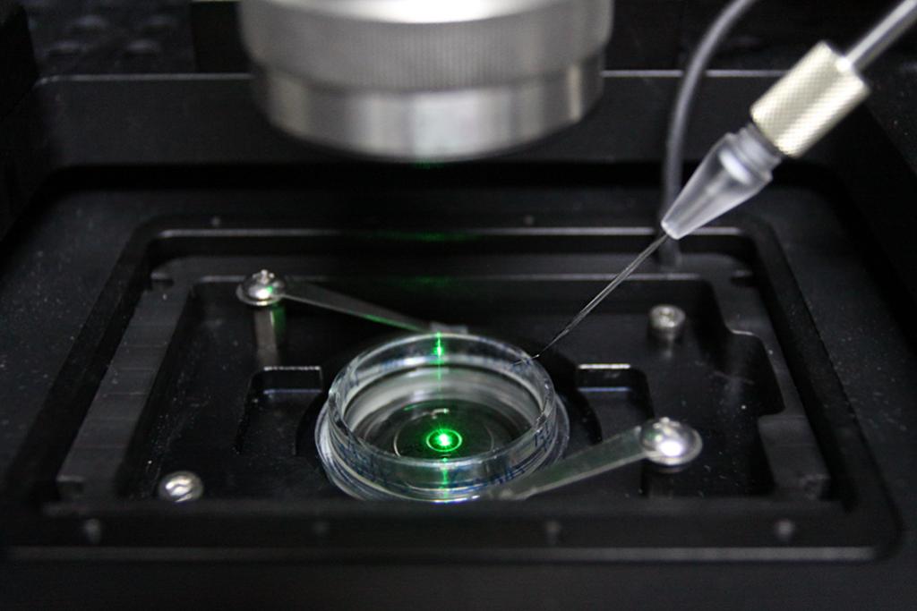 謝佳龍團隊打造每秒可拍五十萬張影像的光學顯微技術,有助科學家在對生物系統造成最小干擾的情況下,直接觀察奈米尺度的活體現象。文章參考│粒子跑再快也拍得到!超高速光學顯微影像技術