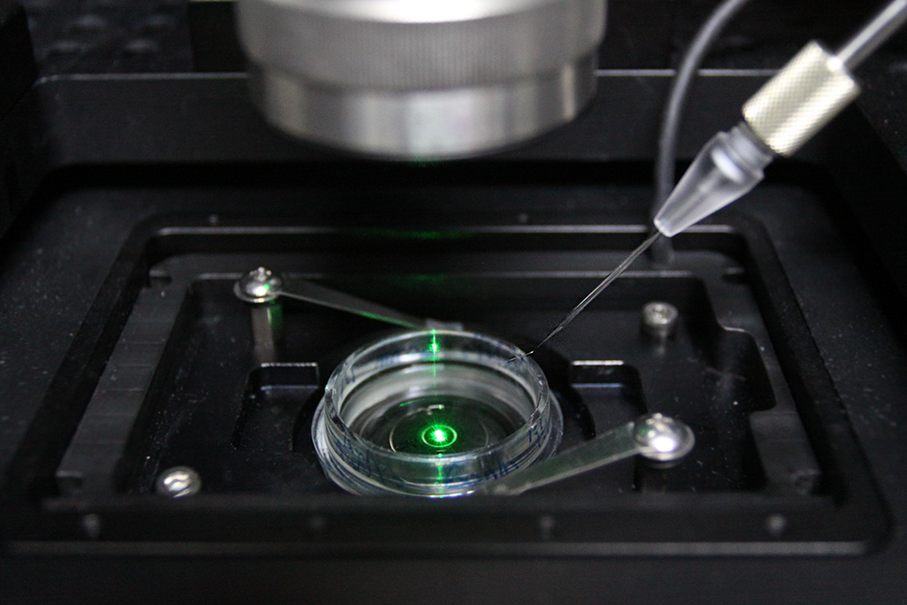 黃逸帆將牛痘病毒粒子裝在極細的玻璃管中,並將玻璃管移至細胞樣本上方,就能在局部釋放出病毒粒子,提高病毒接觸到細胞表面的機率。 攝影│張語辰