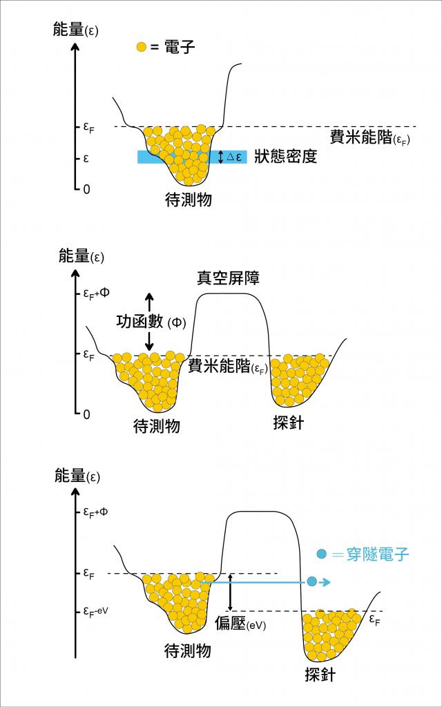 穿隧效應示意圖 圖1. 電子填充在待測物的能量谷中,填充的頂部能階,稱為費米能階 εF 在特定能量ε時,這一段能量谷裡所能分布的電子數,就是狀態密度。 圖2. 探針與待測物之間的真空屏障製造了相當大的能量障蔽,阻礙電子的流動。 如同爬山一般,必須提供足夠大的能量(功函數),才能讓電子在兩物體之間流動。 圖3. 如果在探針(或樣品)製造一個偏壓,使兩物體的費米能階有高低差時。電子就有機會利用穿隧效應通過真空屏障。在此圖中,電子由待測物的價帶到達探針的傳導帶。 資料來源│Hoffman Lab 圖說重製│廖英凱、張語辰