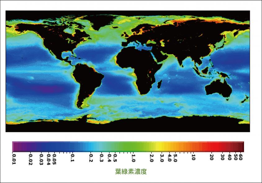 全球海洋生物量的分布图,色温越高代表海水中浮游植物生物量 (biomass) ──叶绿素愈高。因为营养物质供应相对较多,高纬度、边缘海、以及涌升流海域的生物量特别高。 图片来源│NASA Earth Observatory 图说重制│张语辰