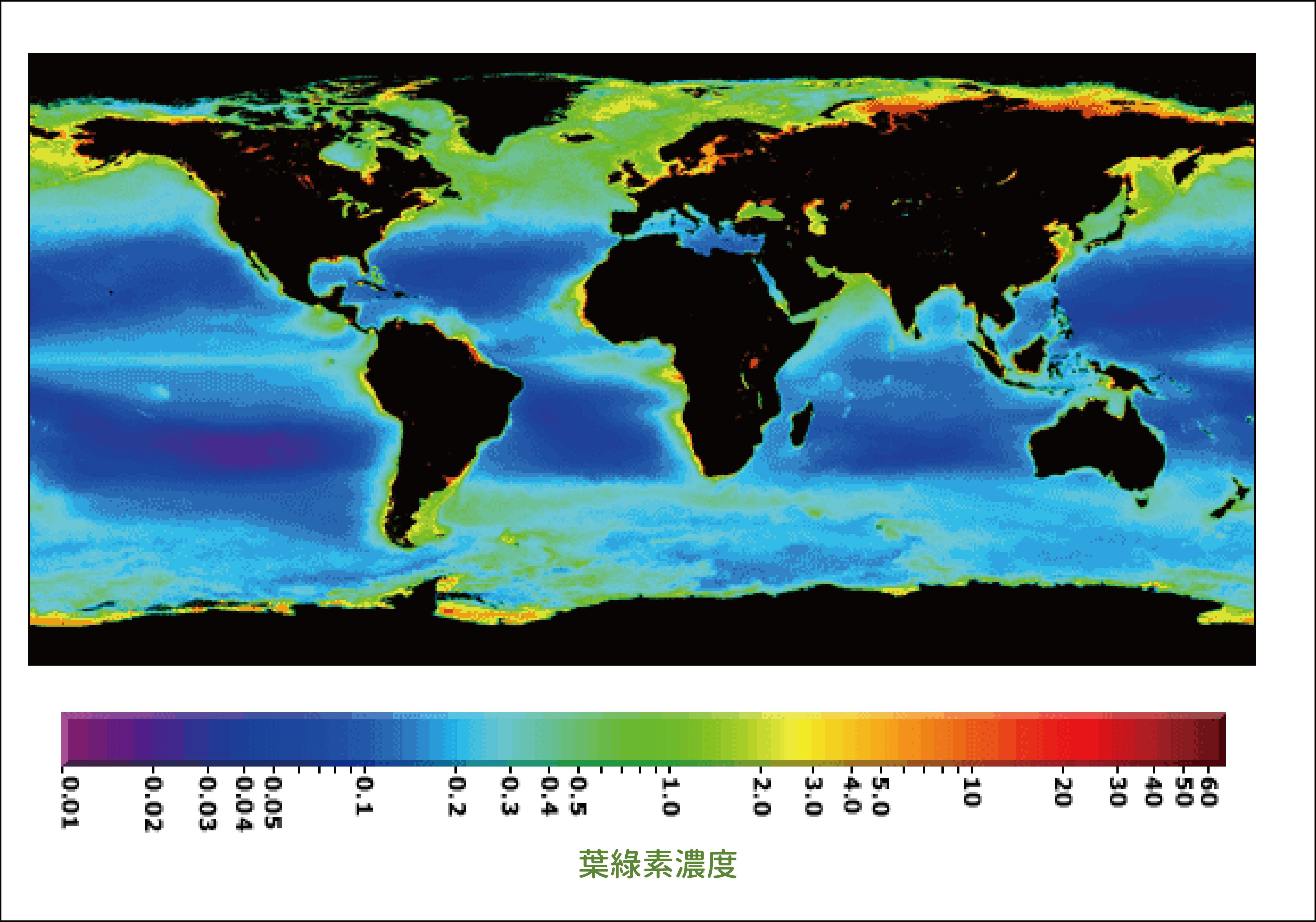 全球海洋生物量的分布圖,色溫越高代表海水中浮游植物生物量 (biomass) ──葉綠素愈高。因為營養物質供應相對較多,高緯度、邊緣海、以及湧升流海域的生物量特別高。 圖片來源│NASA Earth Observatory 圖說重製│張語辰