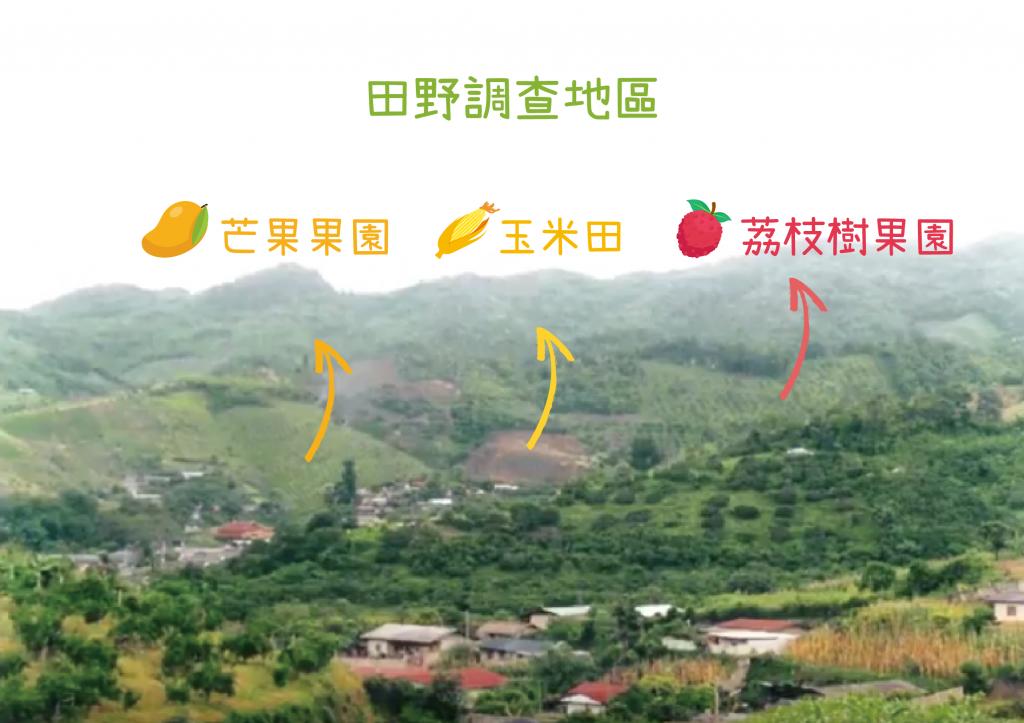 黃樹民與雲南大學、清邁大學團隊,選擇芒果、玉米、荔枝樹農地,檢測當地農作對水土成分的影響。 圖片來源│黃樹民提供 圖說重製│張語辰