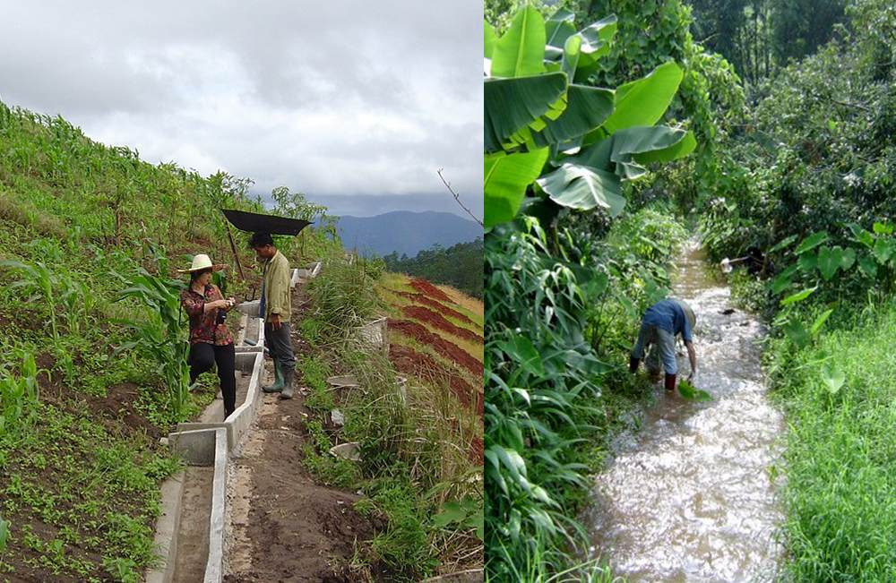 (左圖)清邁大學土壤學教授,在果園坡地建造水泥槽,檢測下雨後有多少泥土被沖刷下來。(右圖)清邁大學的研究生,定期在農田附近小溪取水,檢測有無化學肥料的鉛汙染。圖│研之有物(圖片來源│黃樹民提供)