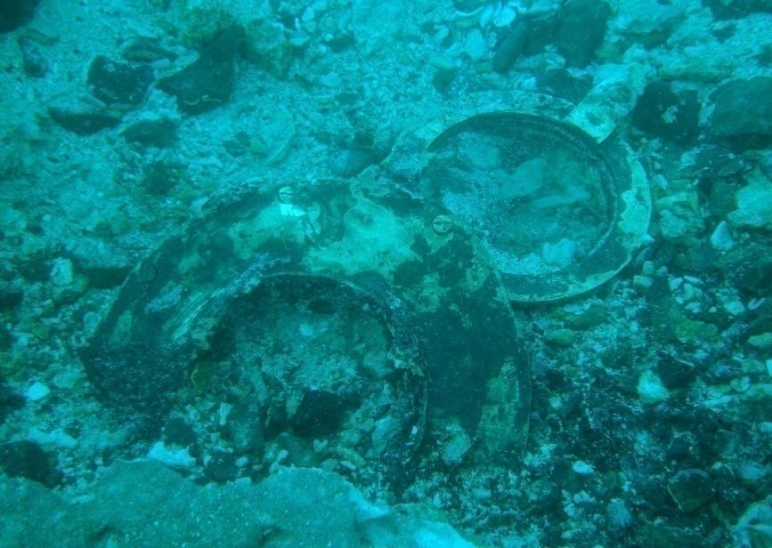 英國籍蒸汽輪船布哈拉號 (SS Bokhara),水中殘骸已經被海砂及珊瑚礁覆蓋。圖片來源│臧振華提供