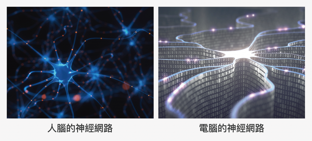 人腦思考仰賴神經網路的運作,科學家也透過設計函數模組,在電腦中組成「類神經網路」,讓電腦藉由餵養的訓練資料,歸納出背後的規則,做出最適合的判斷。 圖片來源│iStock 圖說設計│林婷嫻、張語辰