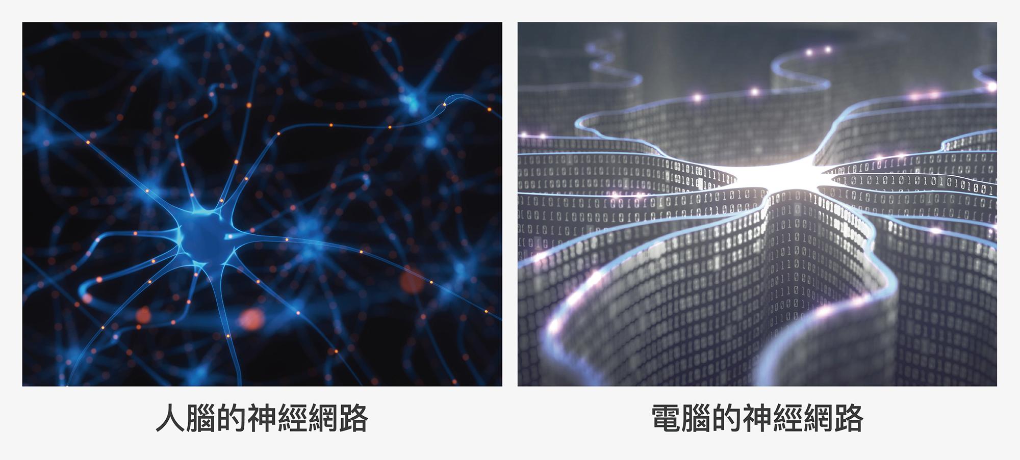 人腦思考仰賴神經網路的運作,科學家也透過設計函數模組,在電腦中組成「類神經網路」,讓電腦藉由餵養的訓練資料,歸納出背後的規則,做出最適合的判斷。圖│iStock (圖說原作│研之有物)