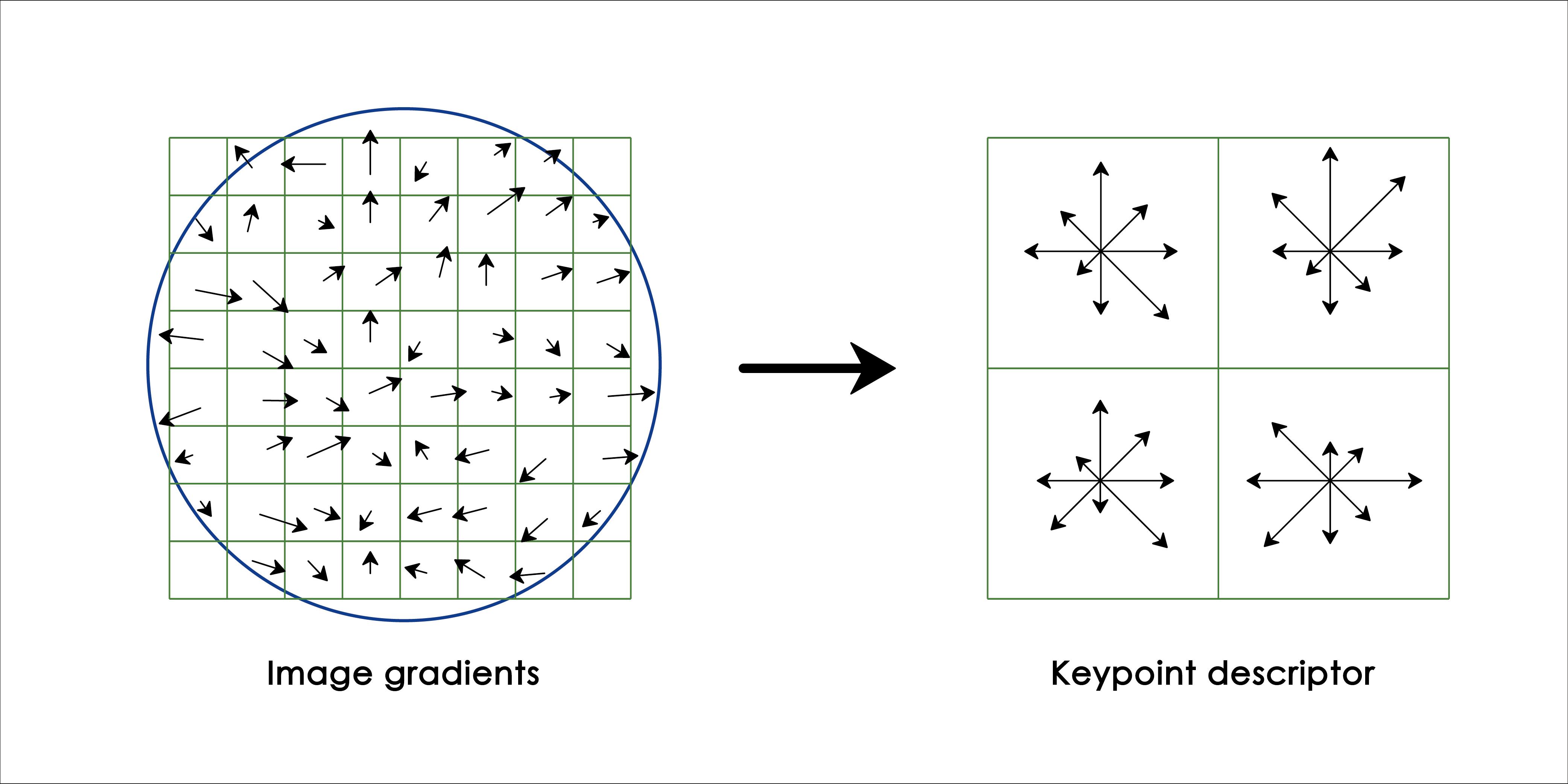 SIFT 電腦視覺演算法:先算出影像中每一個小區塊的方向性與梯度變化,再整合成各大區塊的方向性與梯度變化,降低資料的維度和雜訊,以利後續應用。圖│陳彥呈