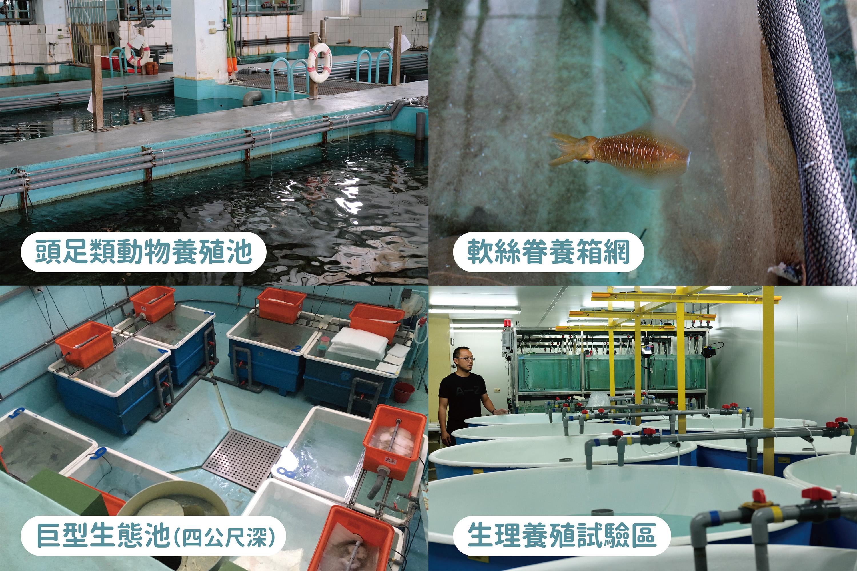 中研院臨海研究站的部分環境。圖│研之有物