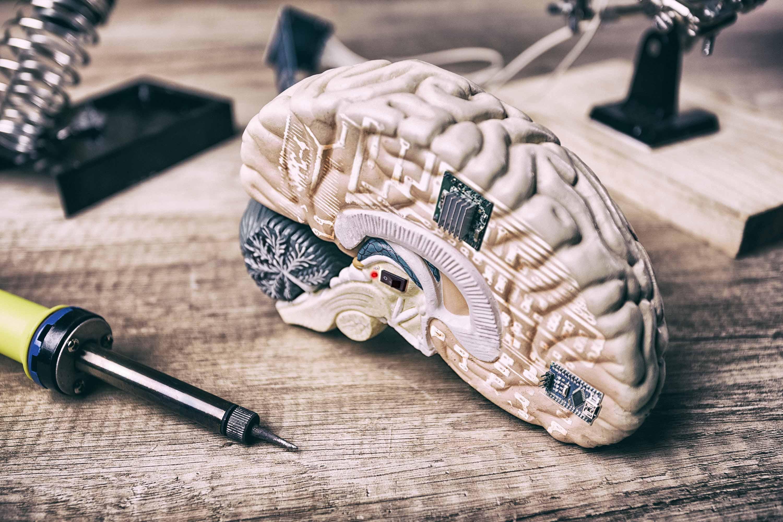 「生物電子」技術不只存在於《艾莉塔:戰鬥天使》、《攻殼機動隊》電影情節,現今許多醫療發展,也在研究如何將電子元件植入生物體內,藉此了解神經退化疾病,或是篩選、純化癌細胞等等。 圖片來源│iStock