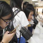 院區開放參觀這天,初心者透過顯微鏡觀察已經被培養好的「誘導型多潛能幹細胞 (iPSC)」。 攝影│張語辰