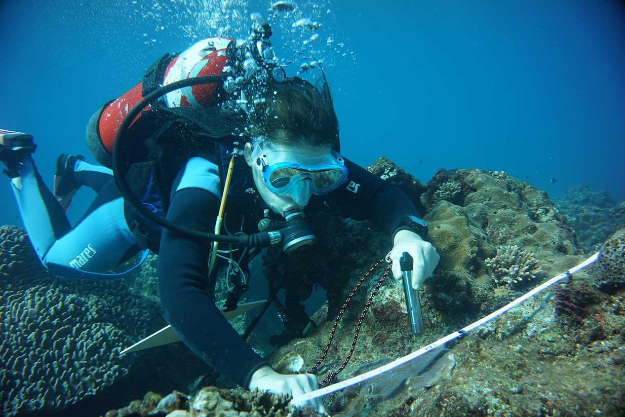 Lauriane 正在檢測珊瑚礁。圖│Lauriane