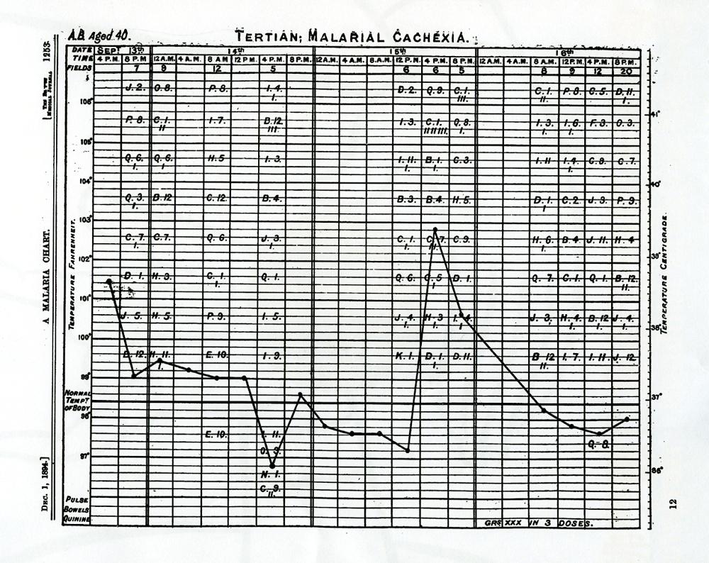 紀錄瘧疾病人的體溫表。資料來源│《帝國的醫師:萬巴德與英國熱帶醫學的創建》