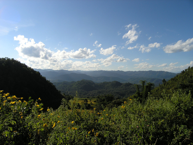 雲南、緬北多高山,自古商隊便常以騾馬為交通工具,進行長程跨境貿易。圖│張雯勤