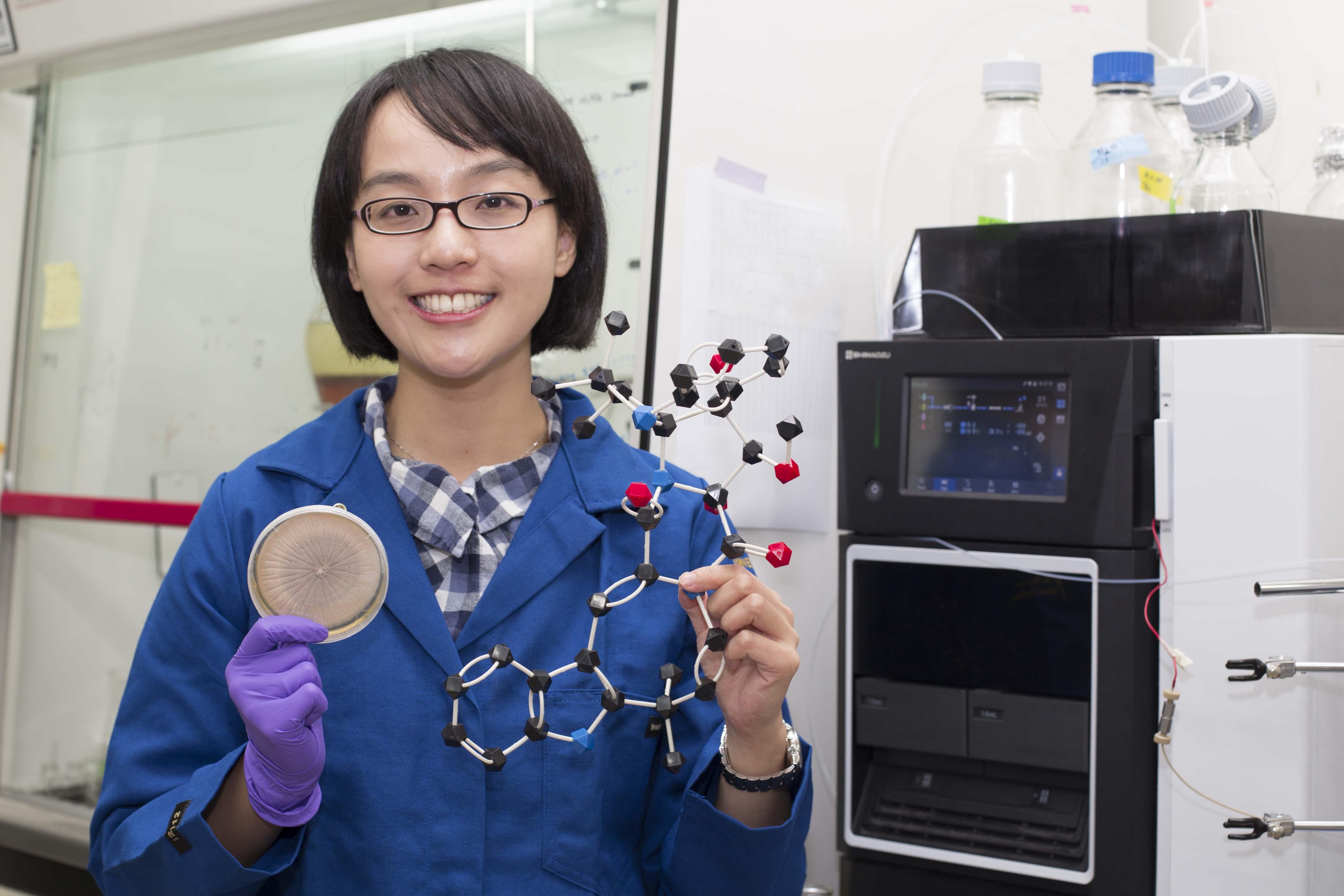 林曉青拿著真菌培養皿、像樂高的 okaramine 分子模型。這兩者藏著真菌殺蟲的秘密。 攝影│張語辰