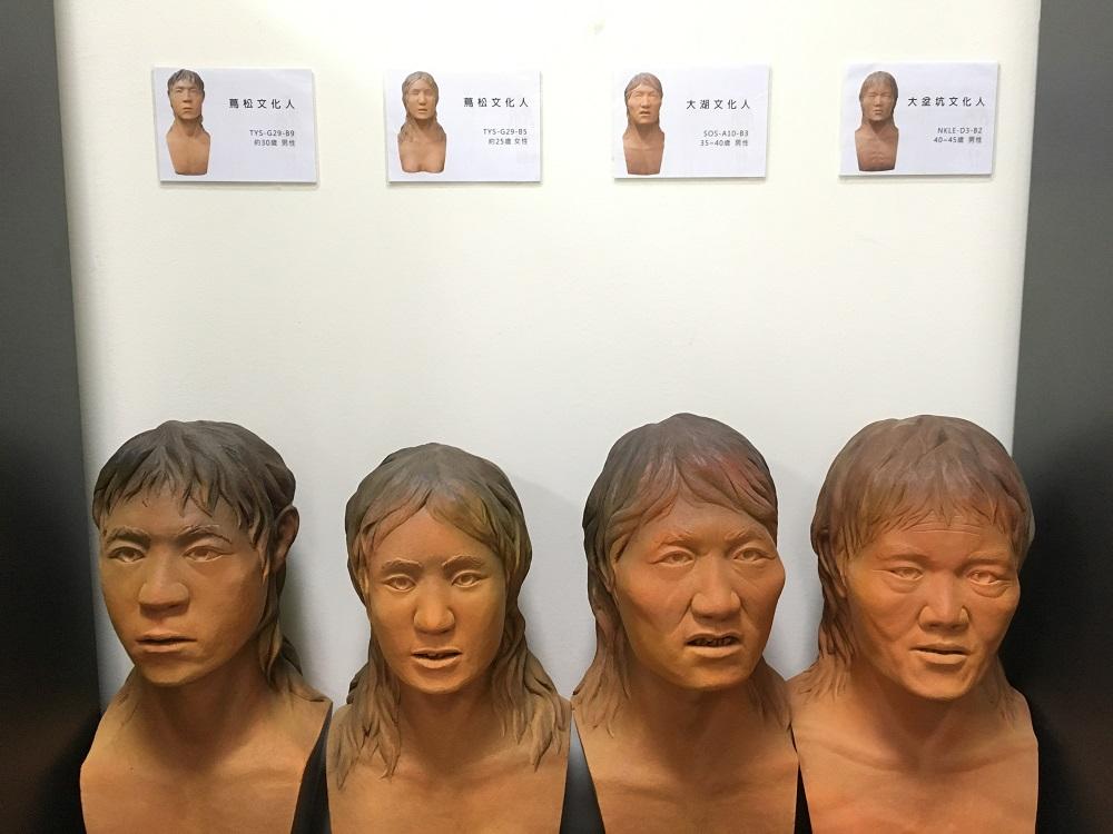 左邊兩位蔦松文化人,屬於南方臉孔。右二的大湖文化人、右一的大坌坑文化人,屬於北方臉孔。圖│研之有物