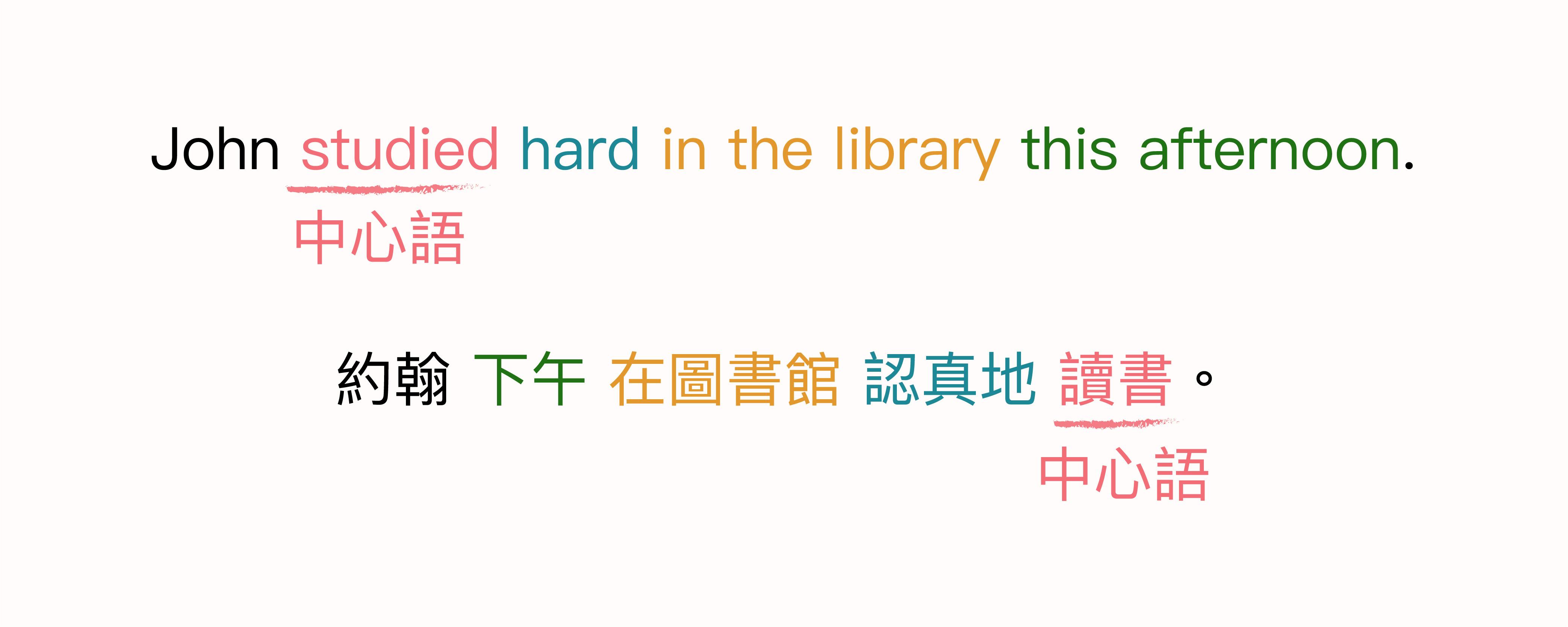 動詞是句子中的核心,也就是「中心語」。從圖中可以看出,中文與英文的中心語位置剛好是相反的。 圖說設計│黃楷元、張語辰