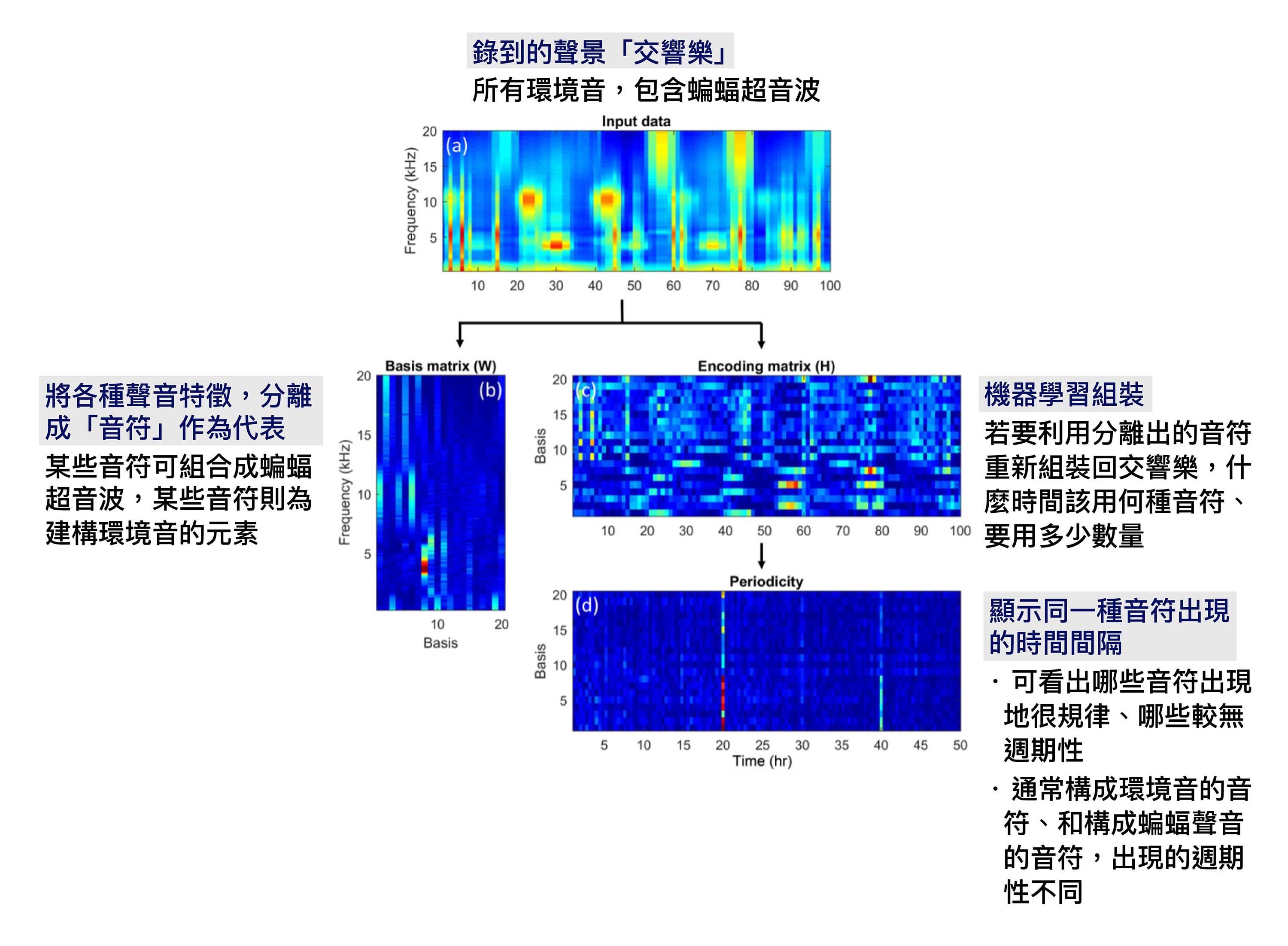 "PC-NMF 技術、與聲音頻譜圖示意。 圖片來源│T.-H. Lin, S.-H. Fang, and Y, Tsao, ""Improving Biodiversity Assessment via Unsupervised Separation of Biological Sounds from Long-duration Recordings,"" Scientific Reports, volume 7, number 4547, pages 1, July 2017. 圖說重製│林婷嫻、張語辰"