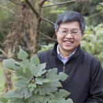對於從構樹葉綠體基因描繪出南島語族史前航線、佐證「出臺灣說」的研究過程,鍾國芳認為是「努力與幸運的結合。」 攝影│張語辰