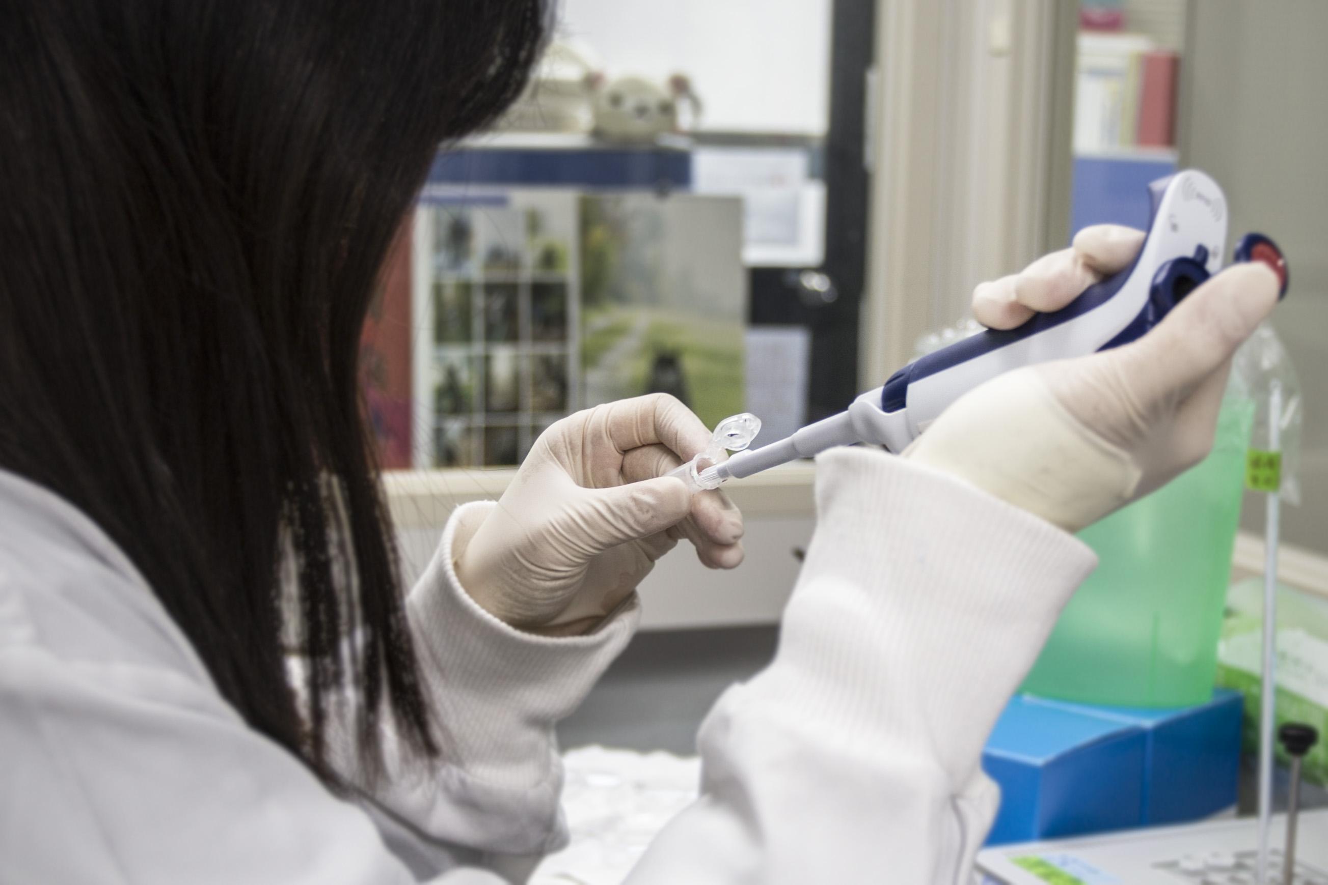 郭沛恩研究團隊的成員,從血液細胞樣本裡抽取 DNA。圖│研之有物
