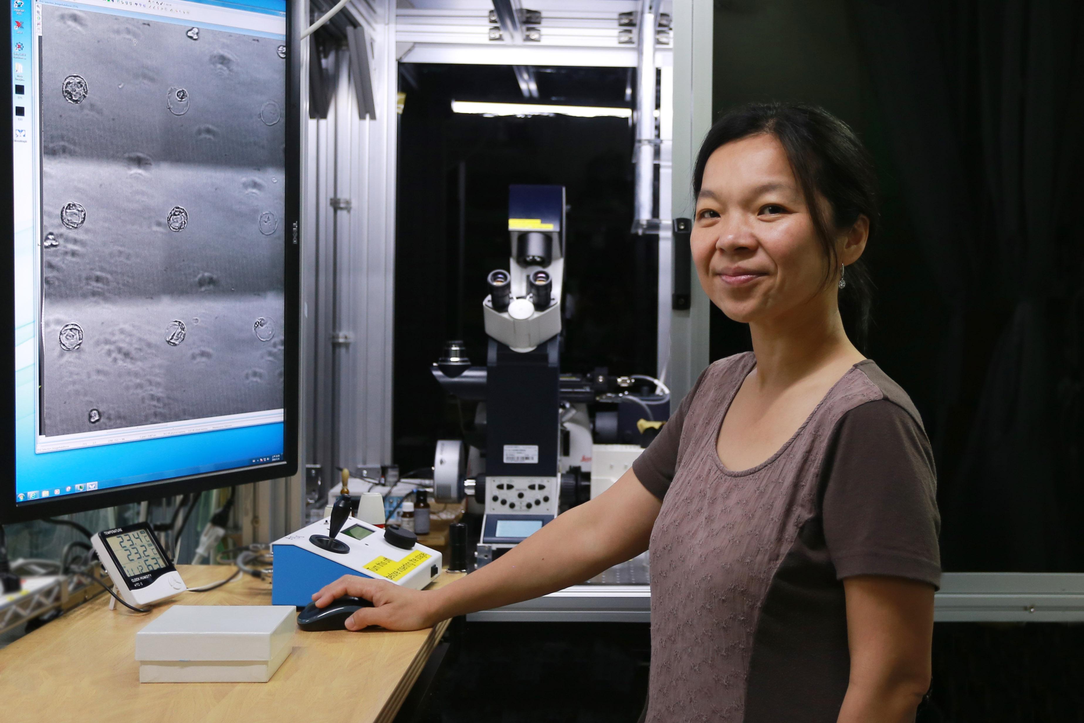 林耿慧在美國念書的時候,有一個潮流鼓勵 physical scientist 轉到 biology 研究。她研究的「軟物質」領域與生物物理也算接近,生物物理中用了許多軟物質的方法。於是,林耿慧回國後就投入了生物物理的研究。 攝影│張語辰