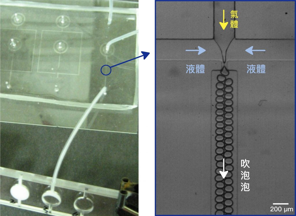 實驗中通入氣體和液體,利用微流道「吹泡泡」製作細胞鷹架,動態如下圖所示。 資料來源│林耿慧