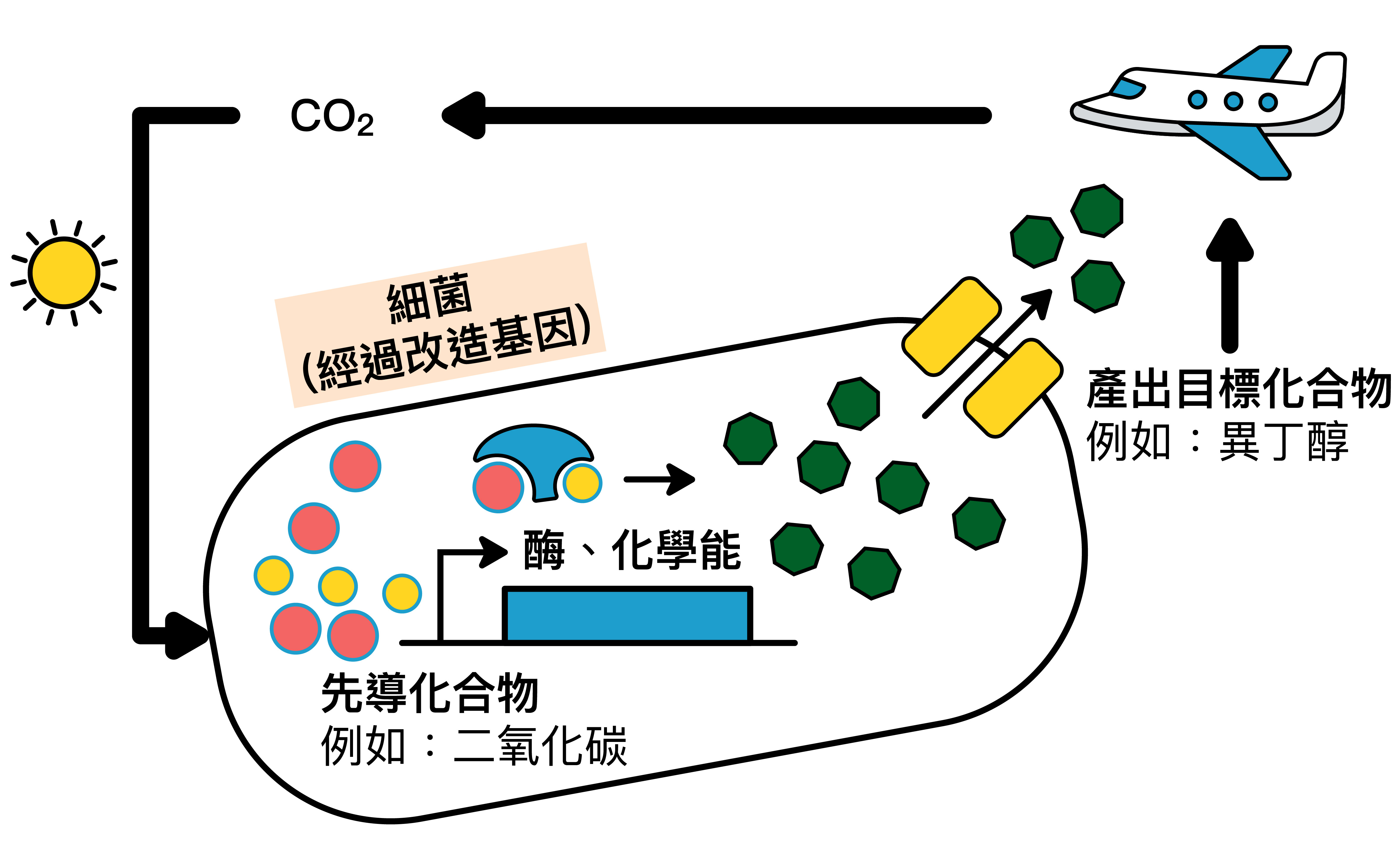 廖俊智與研究團隊,計畫讓細菌細胞進行的合成反應途徑:以二氧化碳為碳源 → 產生燃料 → 達成新的碳循環。 資料來源│廖俊智說明 圖說設計│林婷嫻、張語辰