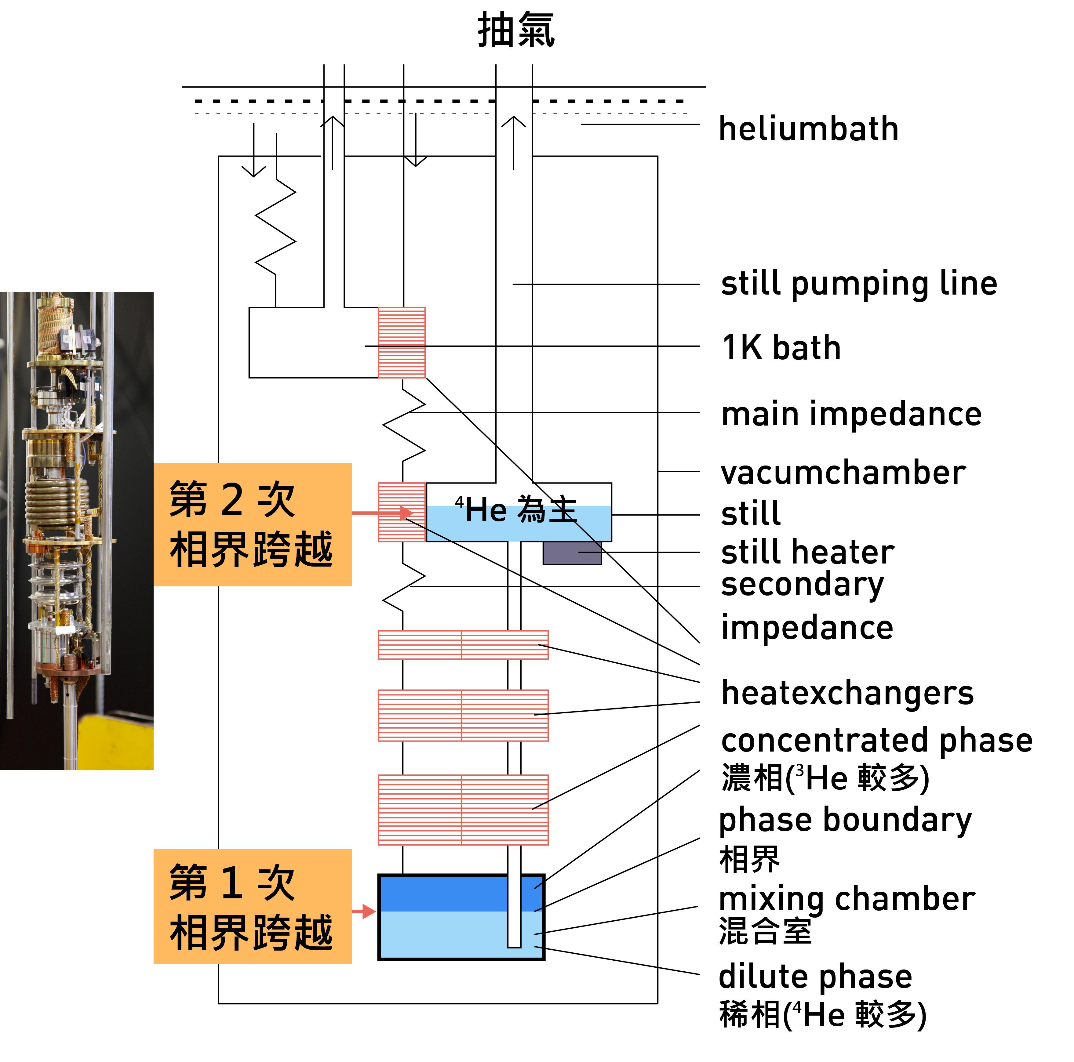 稀冷機的裝置示意圖:(1) mixing chamber 中有兩個不同 3HE 和 4HE 組成的液態相。(2) 當對 still 抽氣時,mixing chamber 中濃相區(深藍色區塊)的 3HE 會被抽走,下層中稀相區(淺藍色區塊)中的 3HE 會穿越過兩相間的界面,補充上層濃相區被抽走的 3HE,此種類似蒸發的作用會帶走熱量。(3) 3HE 再穿越至 still 區蒸發、將熱量帶走,而能降低溫度。 圖│研之有物、廖英凱(資料來源│陳洋元)