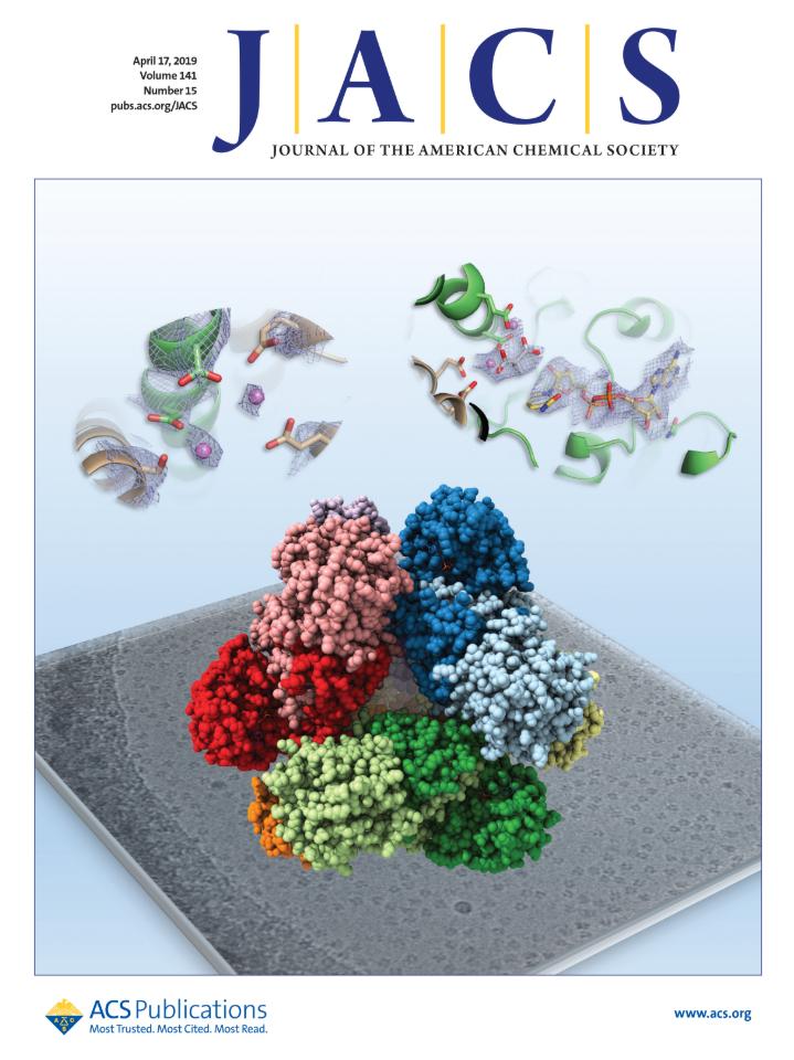 4 月 17 日出版的《美國化學學會期刊》,蔡道明院士此次的研究成果「蛋白質酵素 3D 立體結構圖」,獲選為當期封面,可見原子級的解析力。圖片來源│《美國化學學會期刊》(Journal of the American Chemical Society)