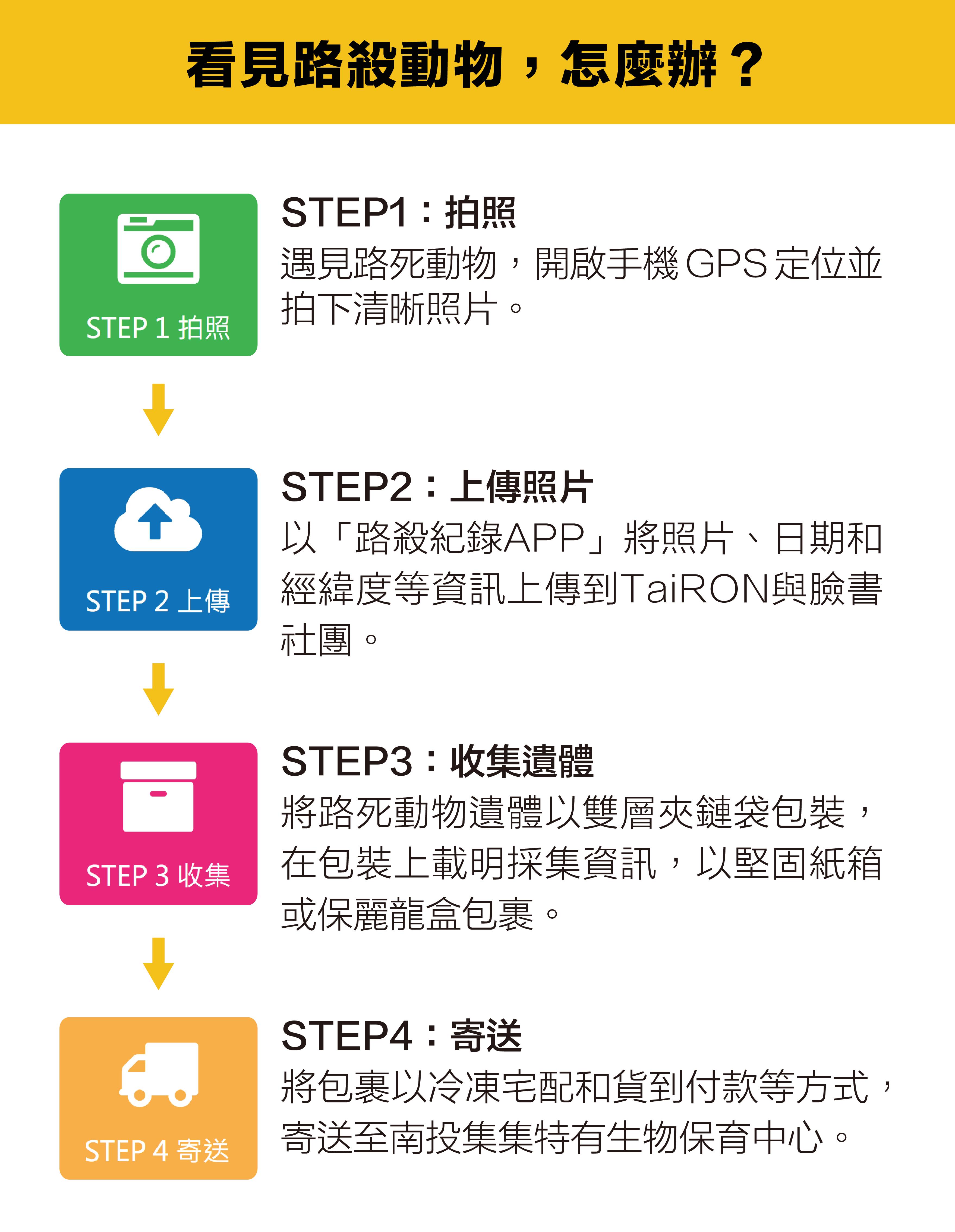 資料來源│台灣動物路死觀察網圖說重製 │林洵安