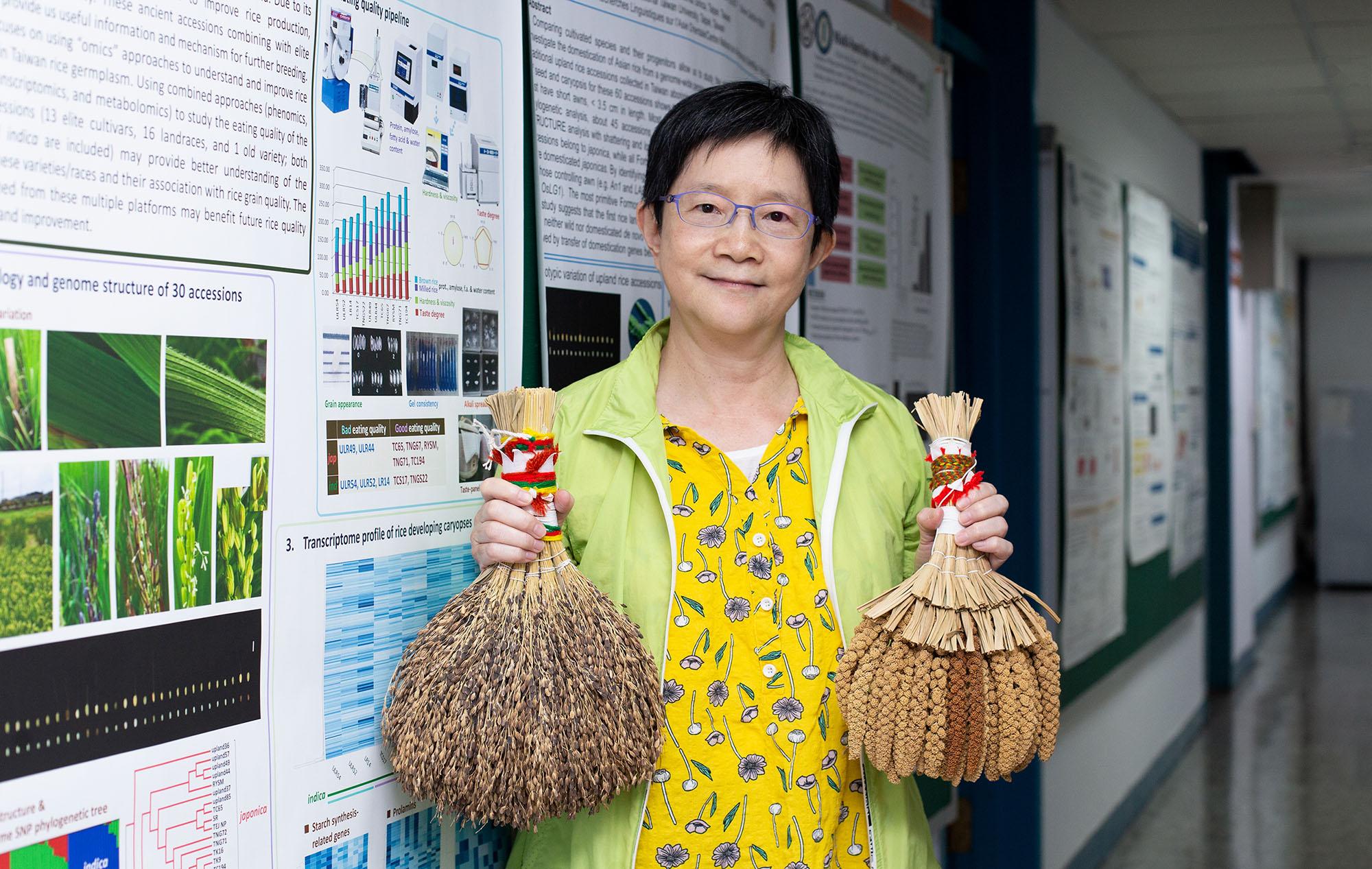 中研院植微所邢禹依特聘研究員專精水稻基因體研究,曾和周德源博士一起領導臺灣的團隊參與「國際水稻基因體定序計畫」,與世界各國合作,定出了水稻 12 條染色體的基因序列。近年來,她的實驗室研究山地陸稻,透過基因定序技術、親緣分析,解讀臺灣的稻米與人的故事。攝影│林洵安
