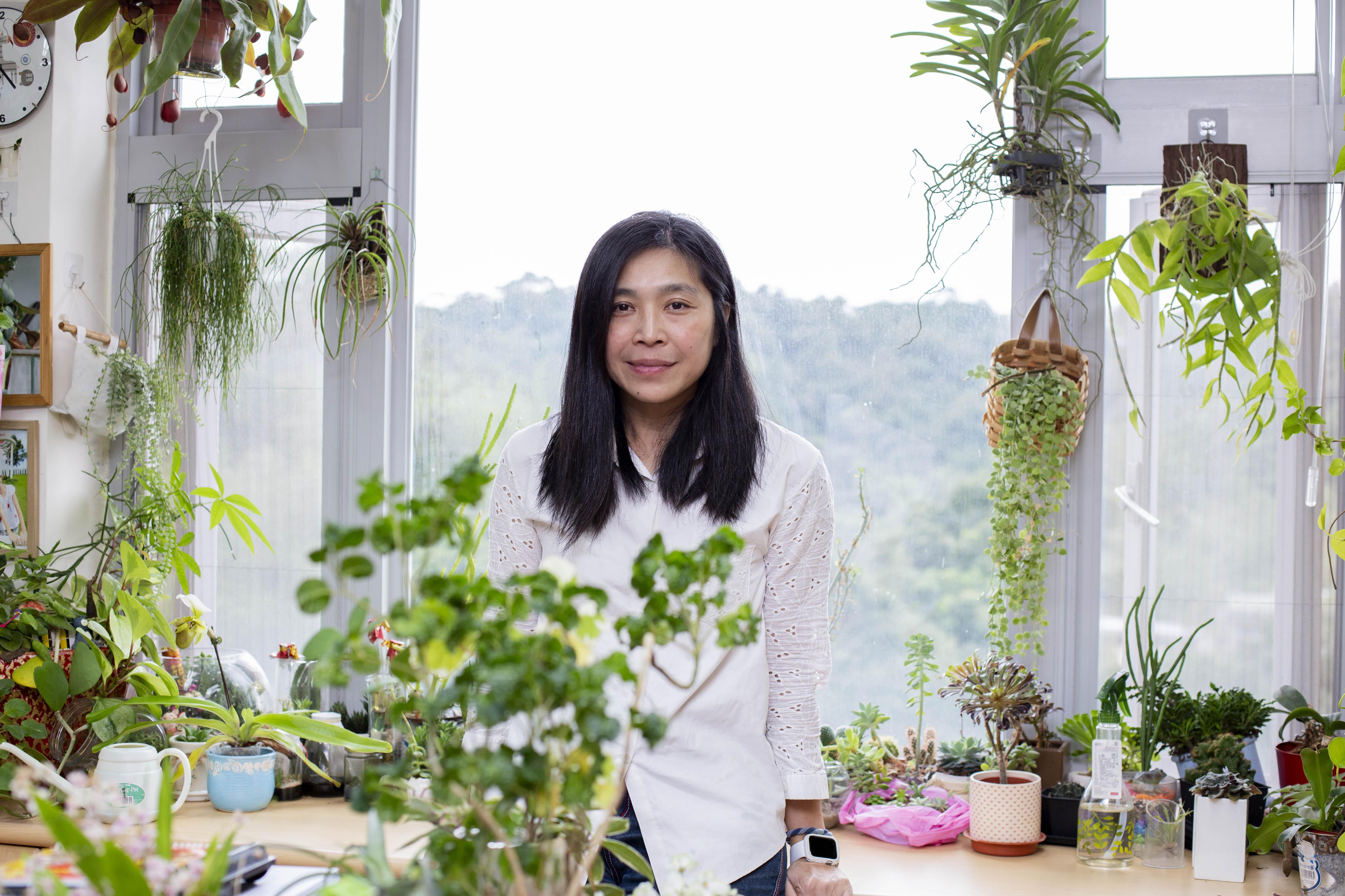 林正慧長年投入臺灣客家史、二二八與白色恐怖研究,從檔案中挖出被隱藏的秘密。相較於學術工作的「鬥智」,走進林正慧的研究室,像踏入一座秘密花園,擺滿她親手栽種的盆栽 ── 點亮「綠手指」,是歷史學者另一項美麗專長。圖│研之有物