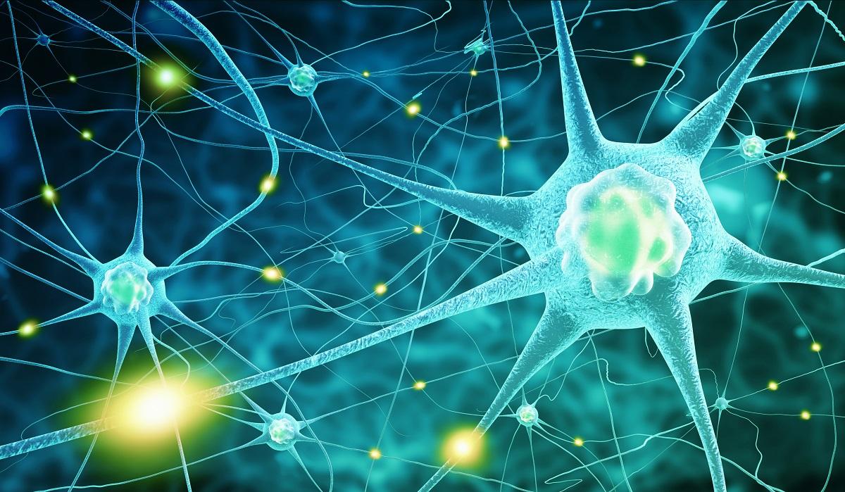 人類的任何情緒和行為,都是大腦千絲萬縷的神經網路,以及大量訊息傳遞的化學分子交錯作用的結果。 圖片來源│iStock