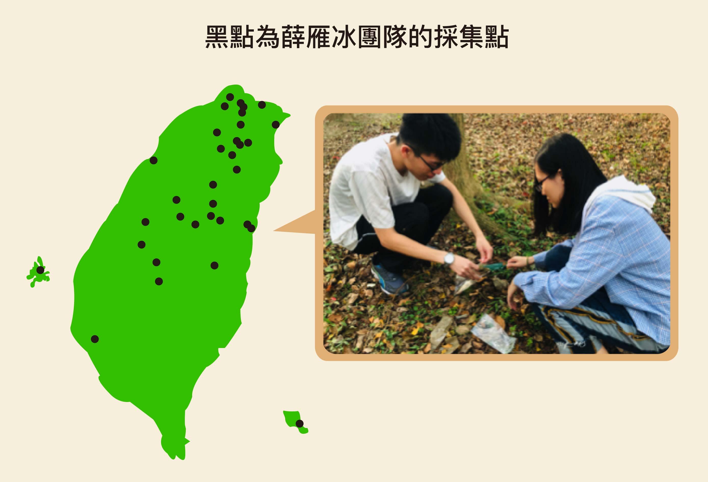 為了研究線蟲和線蟲捕捉菌在自然界的互動關係,薛雁冰團隊必須到臺灣山野間採集,從泥土中分離出各式各樣的線蟲和真菌,並整理在大自然中哪些線蟲會和哪些線蟲捕捉菌生長在一起。資料來源│薛雁冰圖片重製│林洵安