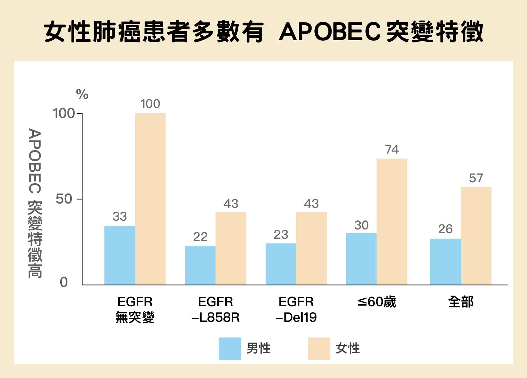 女性比男性更容易具有 APOBEC突變特徵,特別是 EGFR 沒有突變的情況下,更是百分之百具有這種突變特徵。圖│陳玉如
