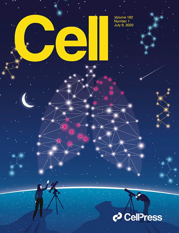 中研院化學研究所陳玉如所長領導「臺灣癌症登月計畫」,深入分析臺灣肺癌病人的基因體與蛋白體,找到了關鍵成因,論文於 2020 年 7 月刊登在國際頂尖期刊《細胞》(Cell),並榮登當期封面。圖│CELL