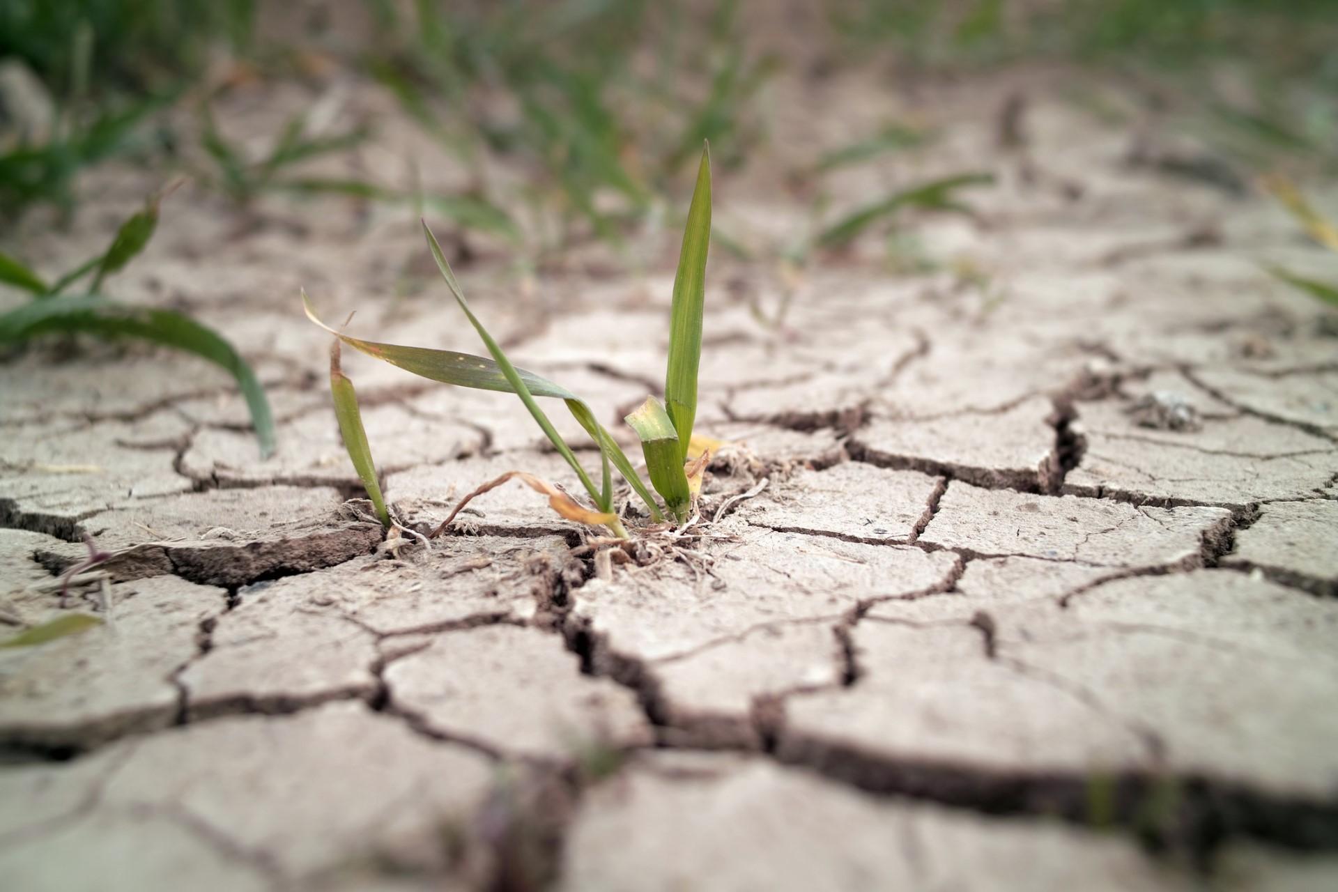 「長期來看,未來下雨的情況,臺灣的水資源、自然災害的情況都容不樂觀。」許晃雄認為,依據氣候變遷推估的情境,雖然本次為號稱百年一遇的大旱,但未來類似的旱象極可能更加頻繁。圖│iStock