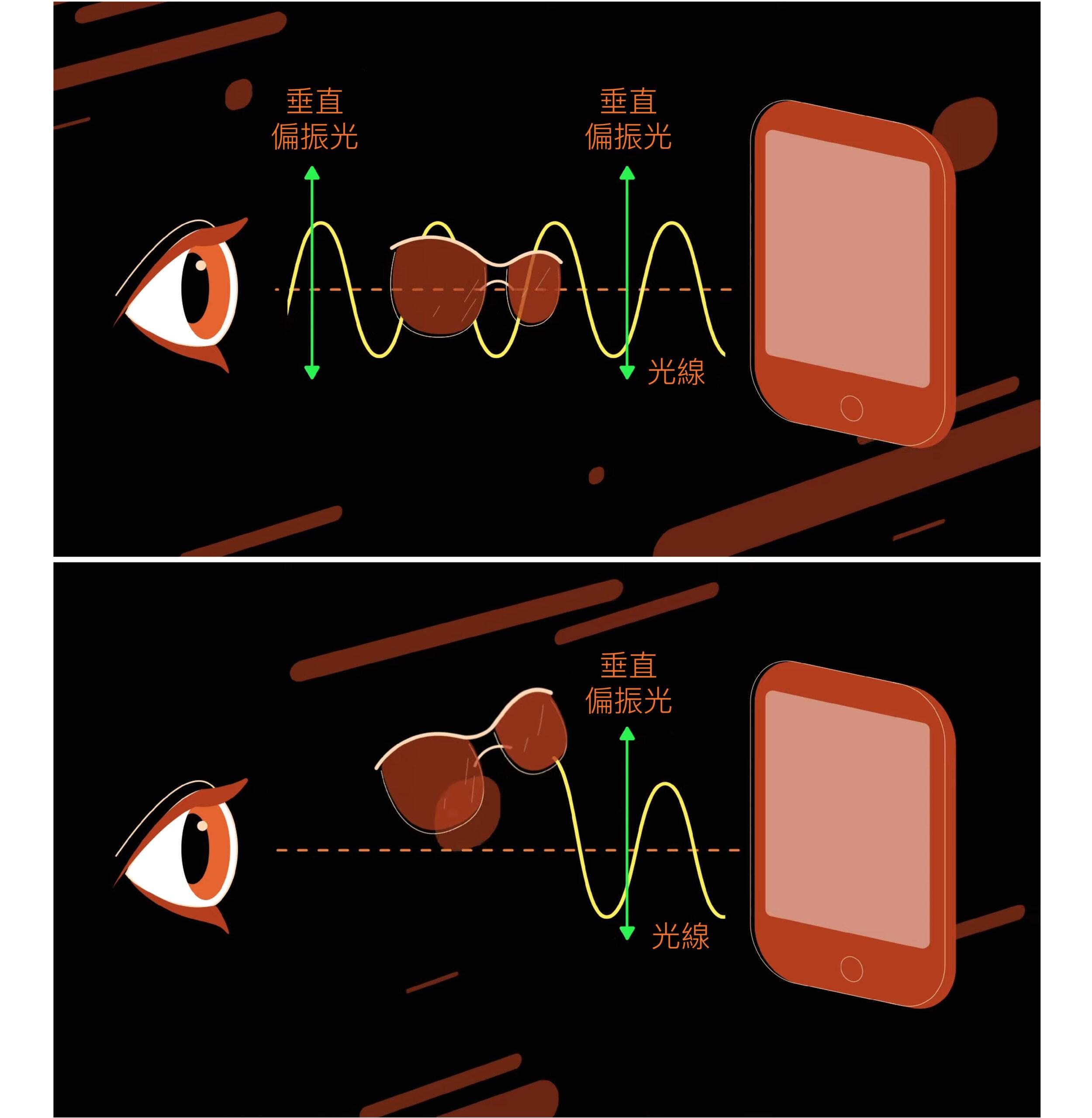 光是一種電磁波,如果光有特定的振盪方向,就稱為「偏振光」。手機發出的光線一般為偏振光,如果透過偏光太陽眼鏡觀看,只能在某個特定角度才能讓光通過,其他角度則不透光。圖│EHT Collaboration and Fiks Film